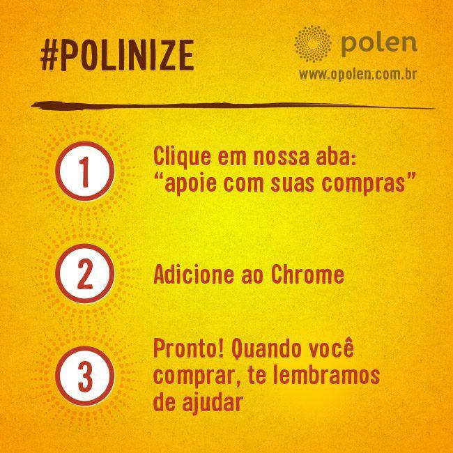 polen-facebook-instalacao